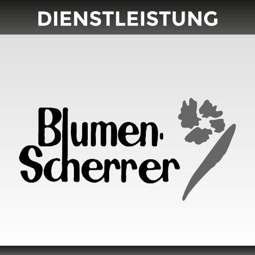 Logo Blumen Scherer
